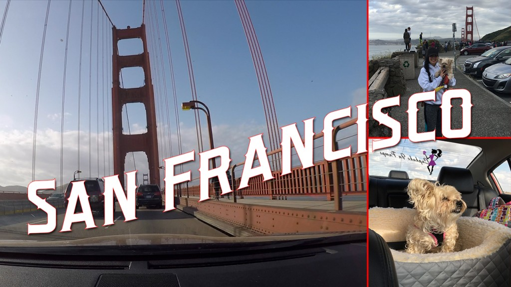 San Fran Thumbnail